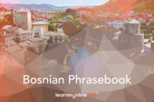 Bosnian Light Phrasebook