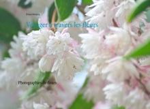 Voyager à Travers Les Fleurs