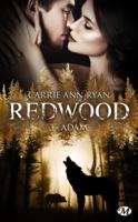 Adam ebook Download