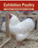Exhibition Poultry Magazine 9.2