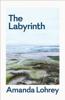 Amanda Lohrey - The Labyrinth: Winner of the 2021 Miles Franklin Literary Award artwork
