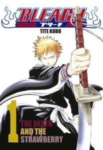 Bleach - vol. 1 Book Cover