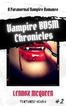 Vampire BDSM Chronicles: A Paranormal Vampire Romance (Tortured Souls #2)