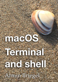 Terminal and shell