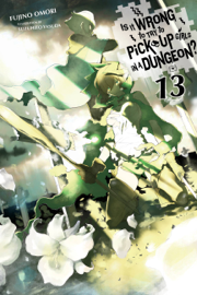 Is It Wrong to Try to Pick Up Girls in a Dungeon?, Vol. 13 (light novel) book