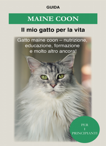 Maine Coon Libro Cover