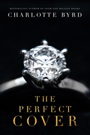 The Perfect Cover PDF Download