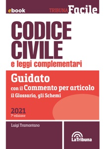 Codice civile e leggi complementari Book Cover