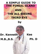 A Simple Guide To The Pineal Gland, And The All Seeing Third Eye
