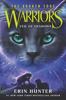 Erin Hunter - Warriors: The Broken Code #3: Veil of Shadows artwork