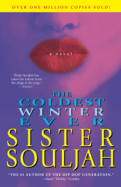 The Coldest Winter Ever PDF Download