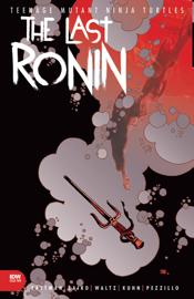 Teenage Mutant Ninja Turtles: The Last Ronin #2