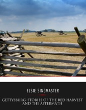 Gettysburg: Stories Of The Red Harvest And The Aftermath