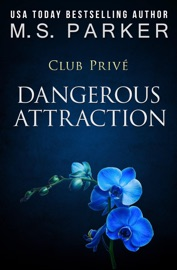 Dangerous Attraction PDF Download