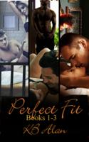 KB Alan - Perfect Fit artwork