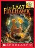 The Secret Maze: A Branches Book (The Last Firehawk #10)