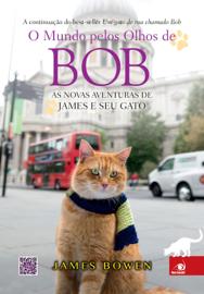 O mundo pelos olhos de Bob