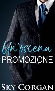 Un'oscena promozione Book Cover