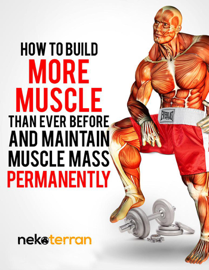 How to Build More Muscle than Ever Before and Maintain Muscle Mass Permanently