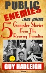 Public Enemies 5 True Crime Gangster Stories From The Roaring Twenties
