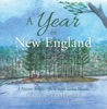 A Year In New England