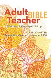 Adult Bible Teacher book