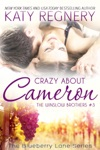 Crazy About Cameron The Winslow Brothers 3