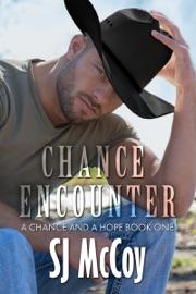Chance Encounter PDF Download