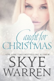 Caught for Christmas PDF Download