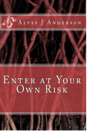 Download and Read Online Enter At Your Own Risk