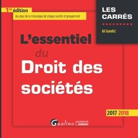LESSENTIEL DU DROIT DES SOCIéTéS 2017-2018