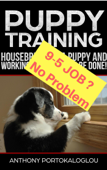 PUPPY TRAINING: Housebreaking a Puppy and Working Full Time CAN be Done!