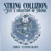 String Collizion: Just A Collection Of Strings