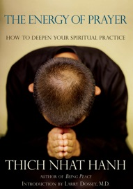 The Energy of Prayer PDF Download