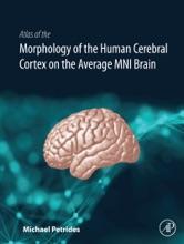 Atlas Of The Morphology Of The Human Cerebral Cortex On The Average MNI Brain (Enhanced Edition)