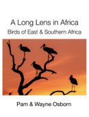 A Long Lens in Africa