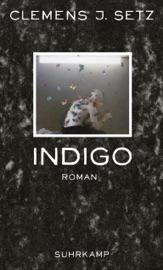 Download Indigo