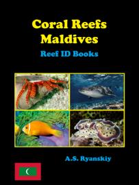 Coral Reefs Maldives