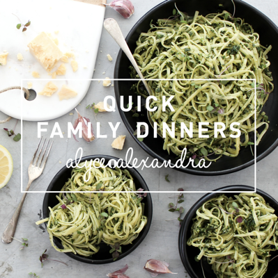Quick Family Dinners in the Thermomix - Alyce Alexandra book