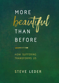 More Beautiful Than Before book