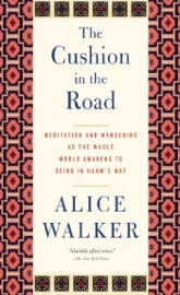 The Cushion in the Road PDF Download