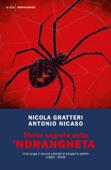 Storia segreta della 'ndrangheta