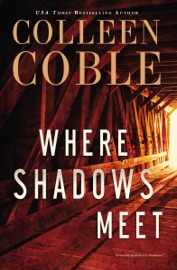 Where Shadows Meet PDF Download