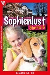 Download and Read Online Sophienlust Staffel 6 – Familienroman
