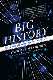 Big History - Cynthia Stokes Brown book summary