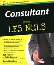 Consultant Pour les Nuls