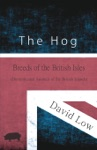 The Hog - Breeds Of The British Isles Domesticated Animals Of The British Islands