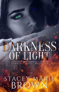 Darkness Of Light (Darkness Series #1)