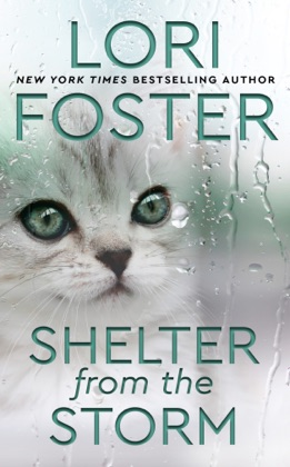 Shelter from the Storm image