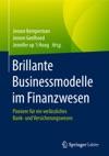 Brillante Businessmodelle Im Finanzwesen